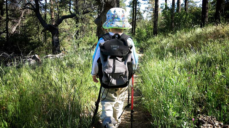 Kid-Hikes-PCT-Mt-Laguna-28-featured